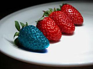 Генетически модифицированные продукты Генетически модифицированные продукты за и против